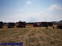 IS_IMG_20210814_150719_Copy